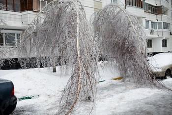 Под Новый год активизировалась новая напасть – ледяной дождь, заковавший в ледяные цепи дороги, машины, людей