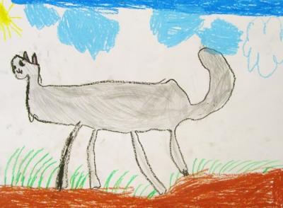 Тимур Толстов, 6 лет